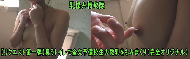 乳揉み特攻隊「【リクエスト第一弾】臭うトイレで金欠予備校生の微乳をもみまくり(完全オリジナル)」